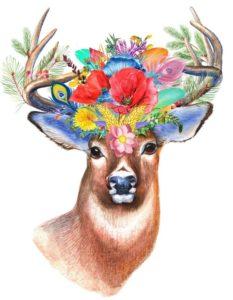 cerf spiritualité spirituality nature monde terre animaux paix joie liberté