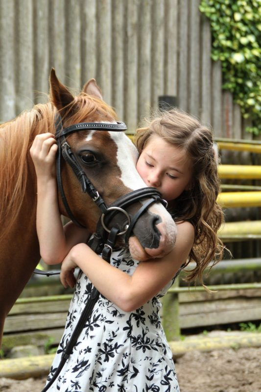 poney petite fille amour