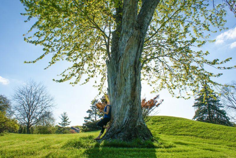 femme arbres forêt bois joie bonheur