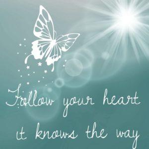 papillon suis ton cœur il connait le chemin
